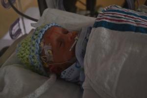 Nolan's EEG