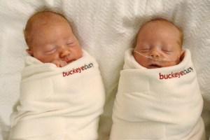 Lil Buckeye Babies