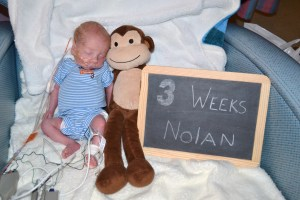 Three week Nolan!